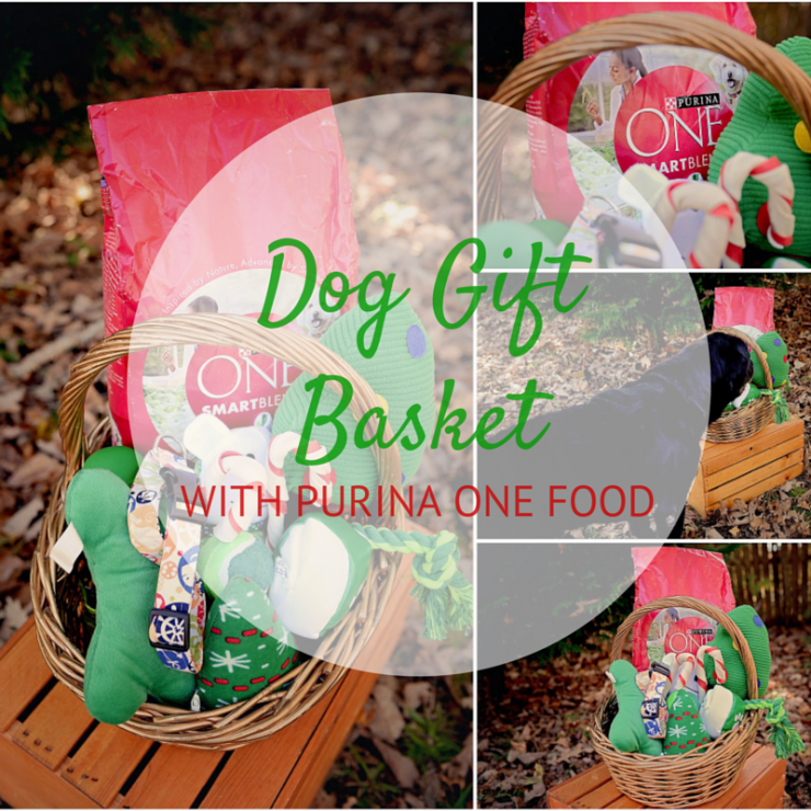 Dog Gift Basket with Purina ONE | #OneSmartDifference #CollectiveBias #ad