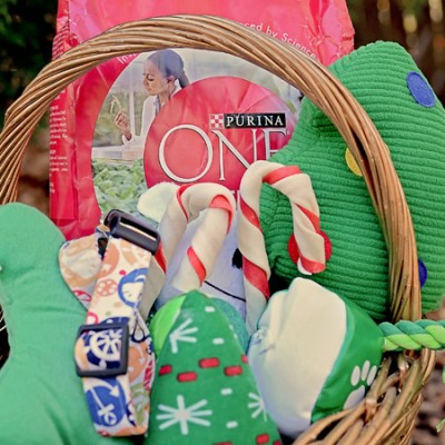 Dog Gift Basket with Purina ONE