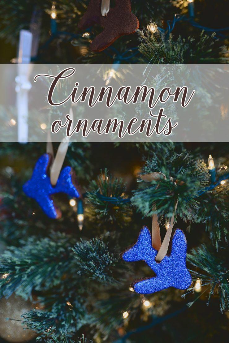 Cinnamon-Ornaments