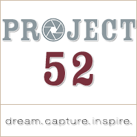 Project 52