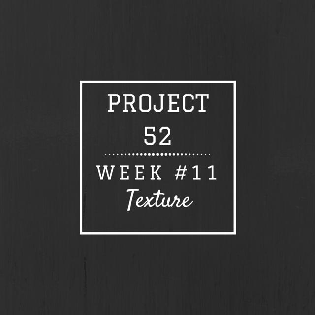 Project52week11