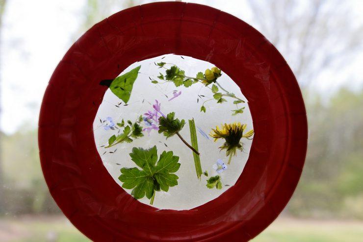 Nature Suncatcher Craft | #ad #CollectiveBias #LongLastingScent