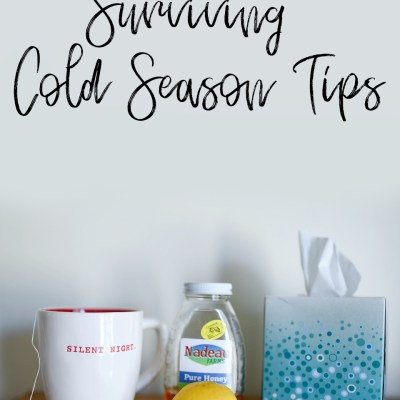 Surviving Cold Season Tips
