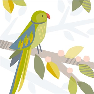 Green Parakeet Card Design from Flamingo Paperie