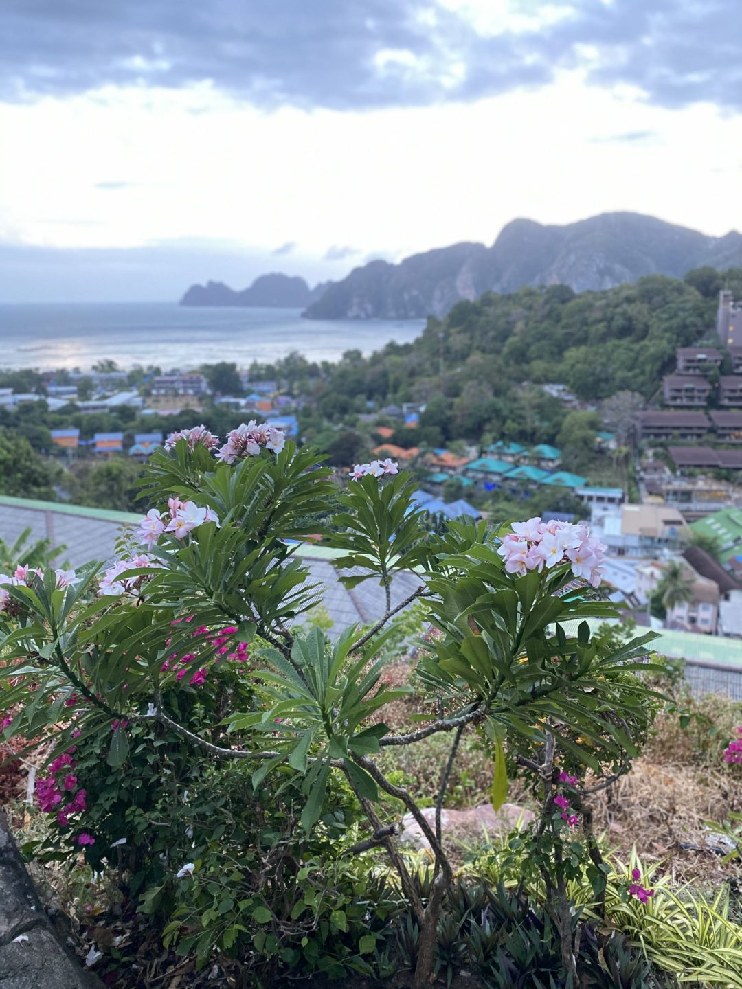 gardens of Viewpoint 1, Koh Phi Phi Don, Thailand