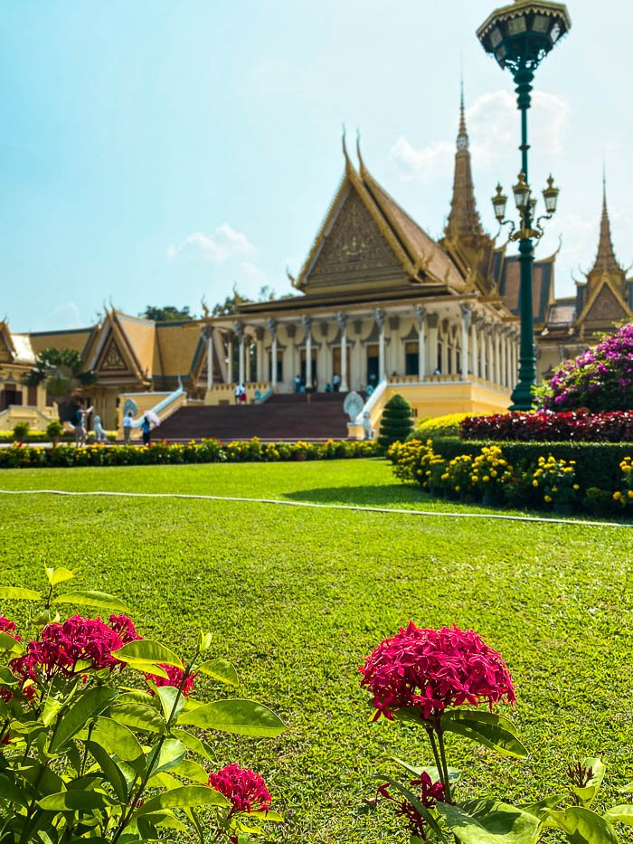 red flowers with Royal Palace of Cambodia in background