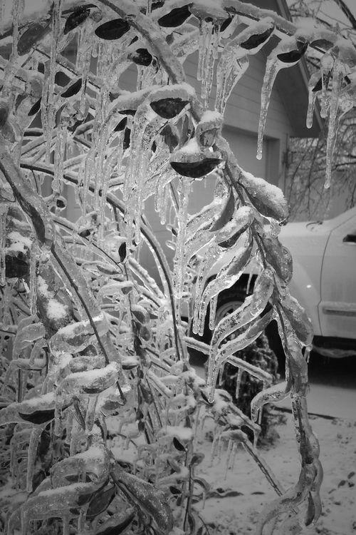 Icestorm_74_editBW