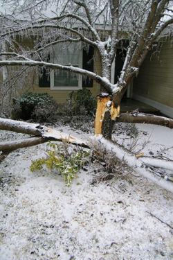 Icestorm_63_edit