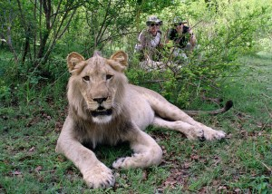 Africa - November 2009