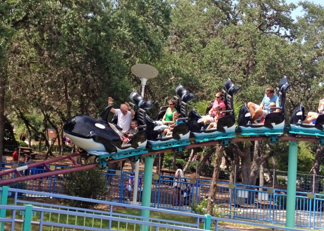 Front row of the Shamu Express!
