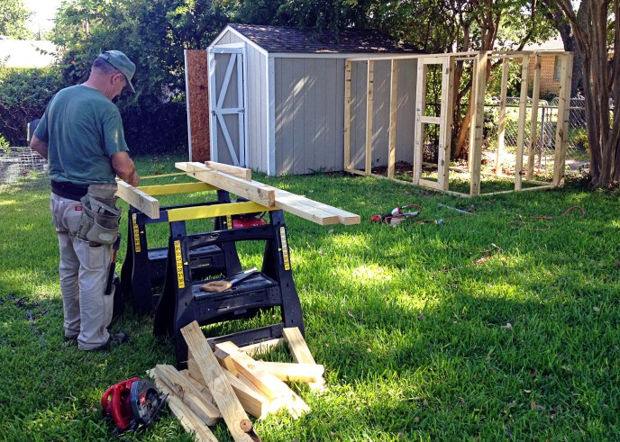 Dad | Chicken Coop Construction