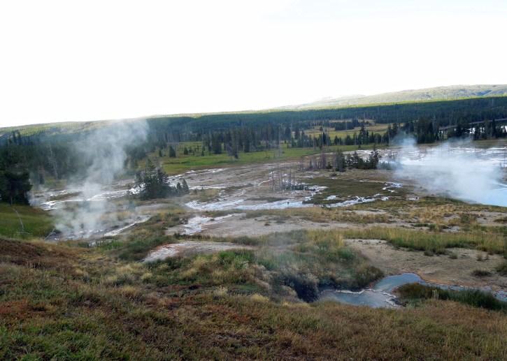 Yellowstone 2015