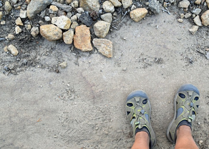 Socks + river shoes = sweet relief for hot spots {Photo: Pacific Crest Trail, 2016}