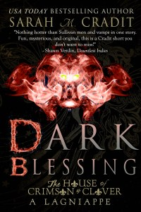 DarkBlessingCoverEbook
