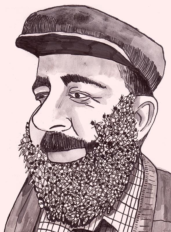bee beard_web