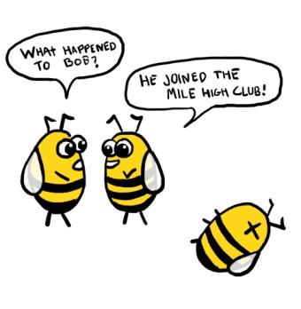 bees mile high club