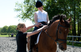 Sarah Sjoholm-Patience Horse and Equestrian Clinics