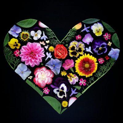 my-garden-heart