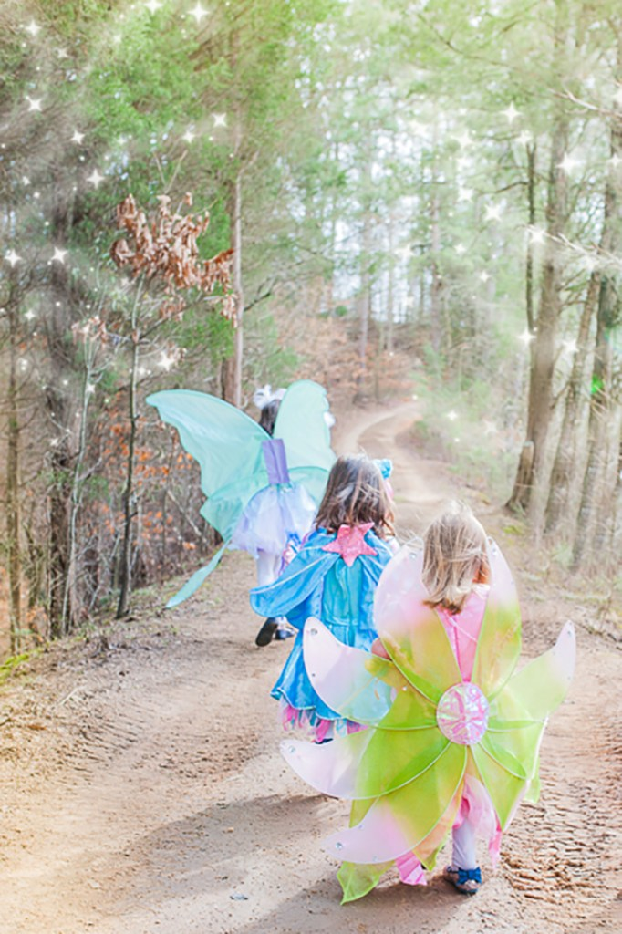 Fairies Unicorns and Rainbows Party Feature Pizzazzerie