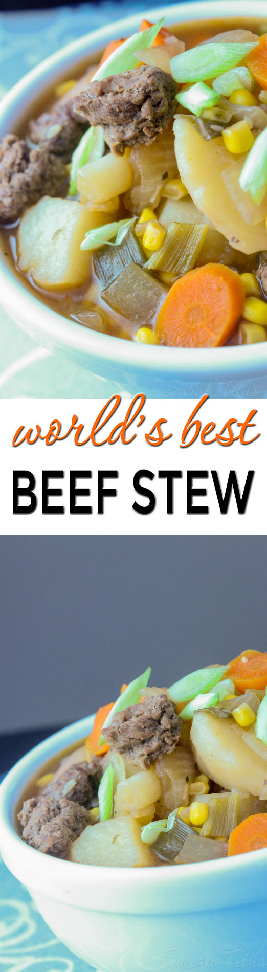Beef Stew - Everyone who eats my world's best beef stew says it's the best recipe they've ever tried. My family always asks me to make it & today, I'm sharing my secret recipe!