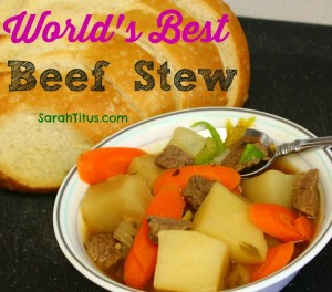 worlds best beef stew