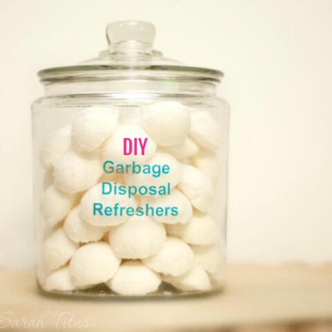 DIY: Garbage Disposal Refreshers