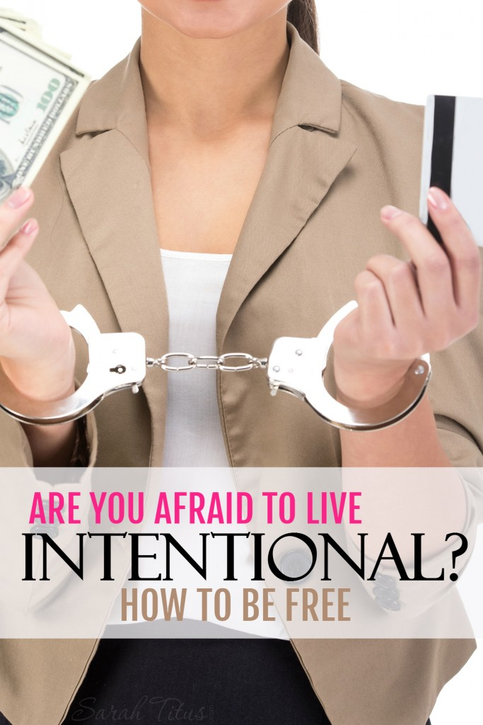 I am wholeheartedly convinced that many people don't go after their dreams because they are afraid of what might happen if they do...are you afraid to live intentionally? Check out this inspirational story from a single stay at home mom who lives quite intentionally.