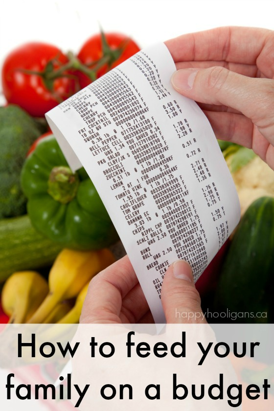 Everything you need to know to feed your family on a budget in one place!