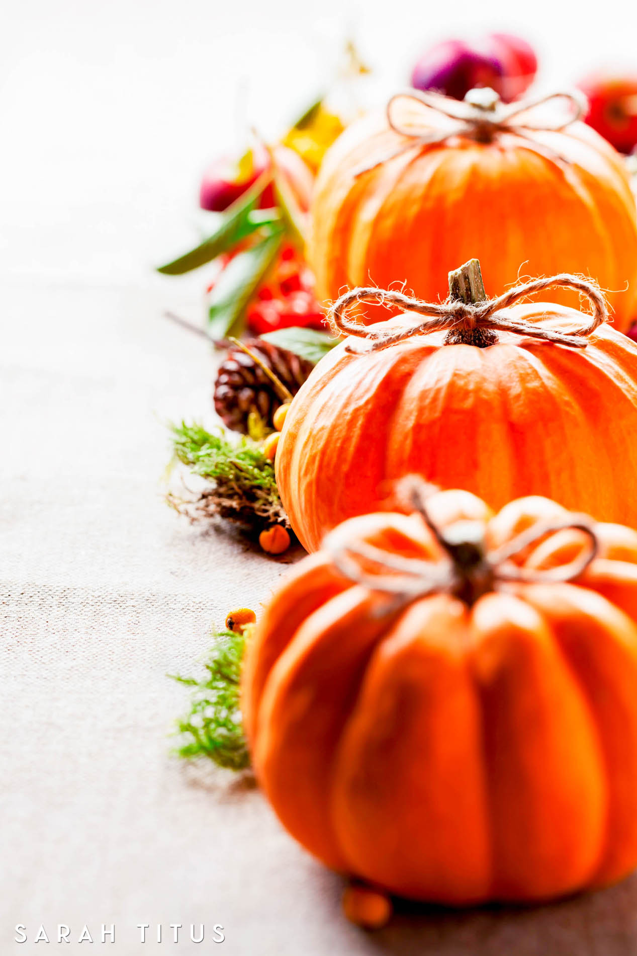 You don't wanna miss these top 10 Thanksgiving free printables. They are all so useful and will help you to have the best Thanksgiving holiday EVER!