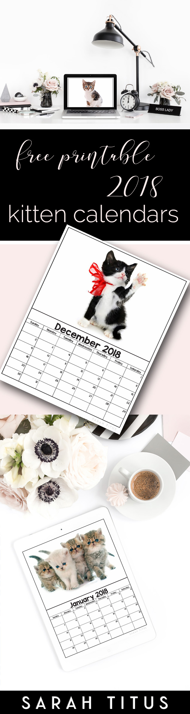 Free Printable 2018 Kitten Calendars! Use them for menu planning, homeschooling, blogging, or just to organize your life. #organize #organization #freeprintables #freeprintablecalendars #2018calendars #free2018calendars