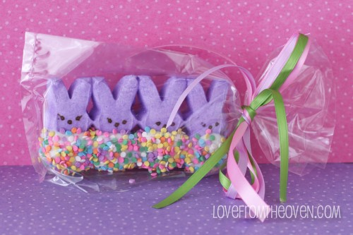 Oh, how cute! Love this idea. Add a cellophane bag and some ribbon and you have the perfect party favor, classmate treat or Easter basket filler.