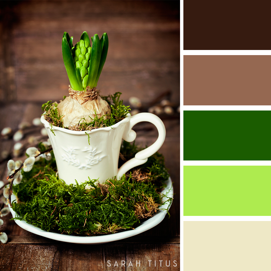 Picking out the right colors for your website, crafts, and designs can be quite difficult sometimes! Trust me, I have been there. Get the best inspiration you can get from these25 Easter Color Palettes. Let me tell you, all of your projects will look divine!