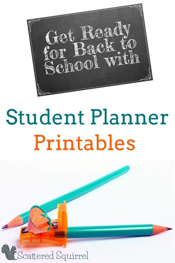Best way to start something is by planning. This planner, will make the back to school transition so much easier.