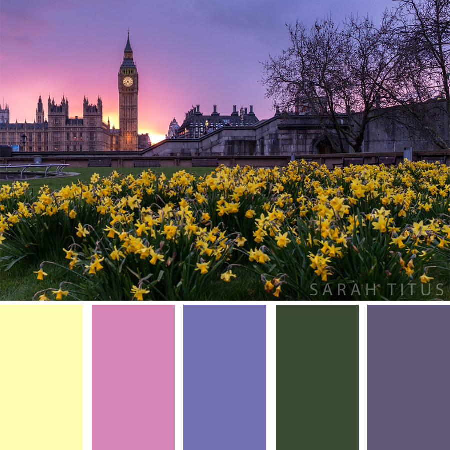 Color Palette of beautiful flowers featuring the beautiful London Big Ben