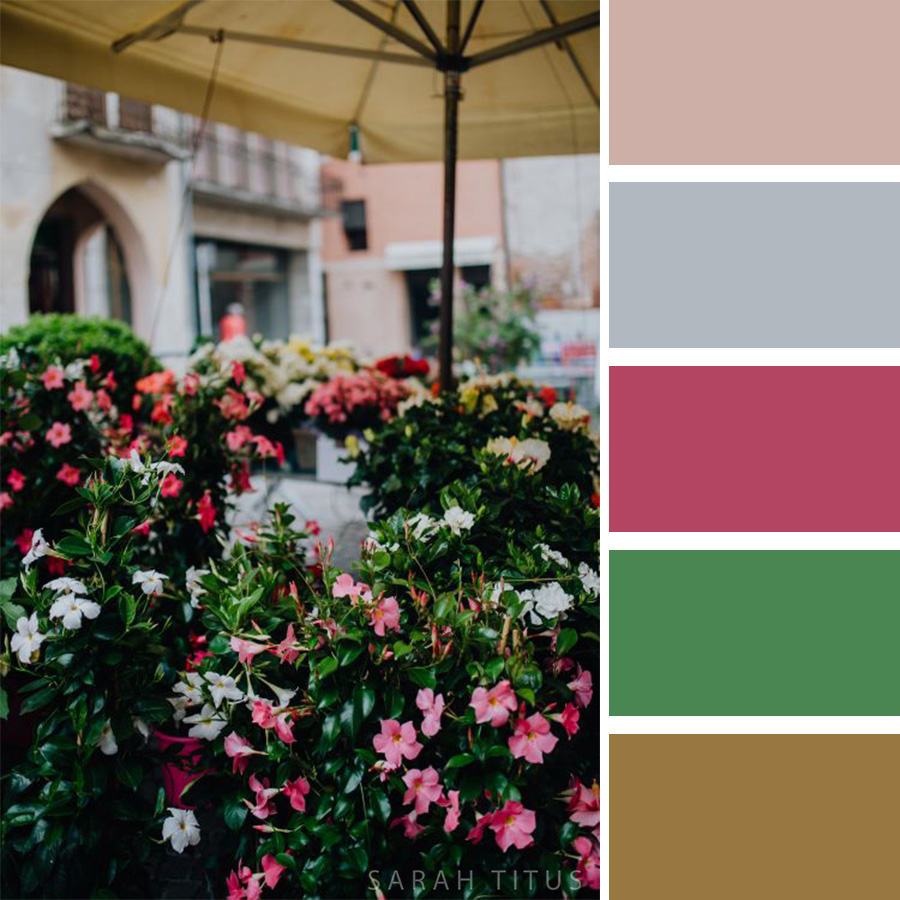 Beautiful Flower Bushes Color Palette