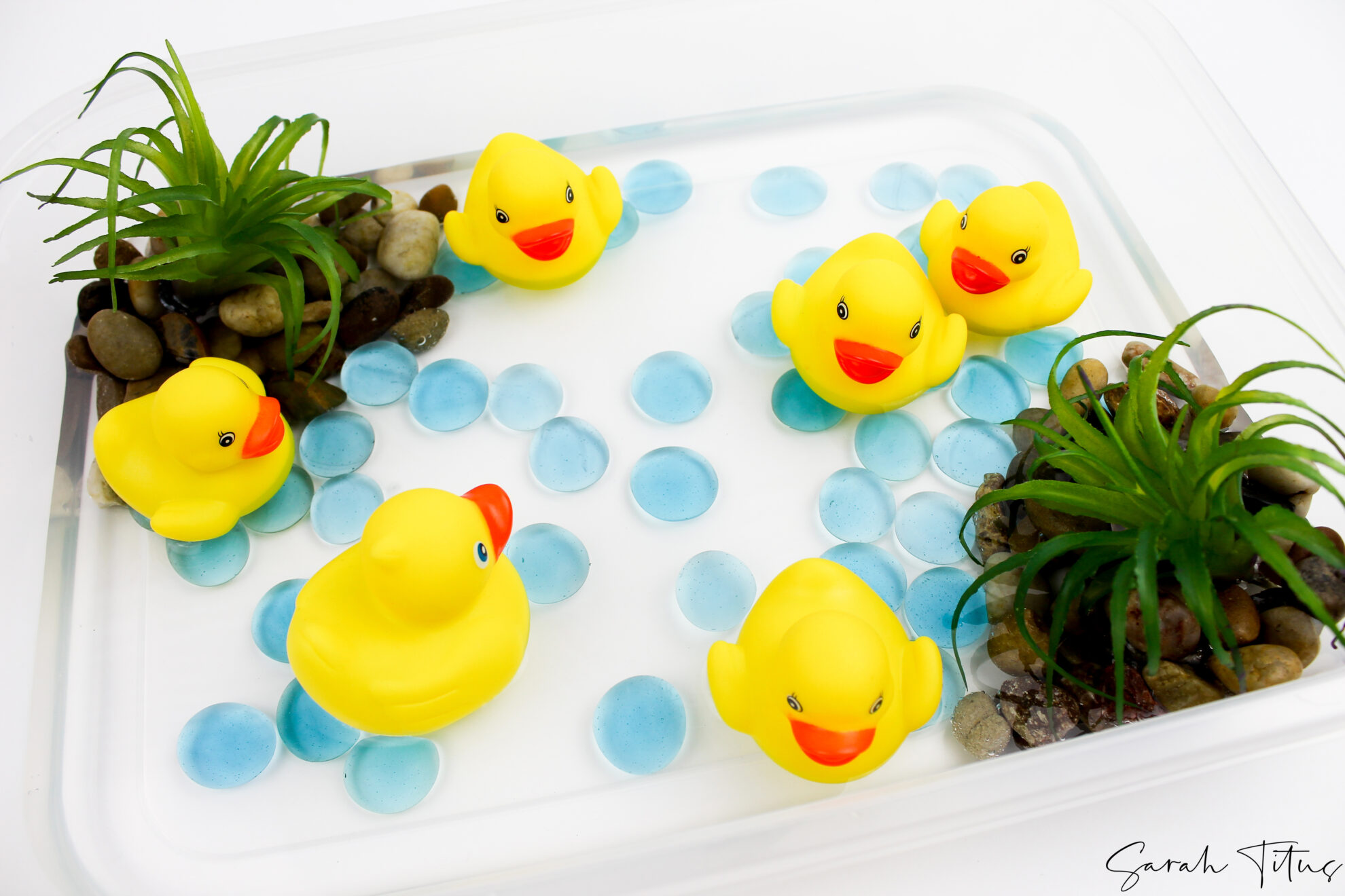 Cute Little Quack Sensory Play For Toddlers