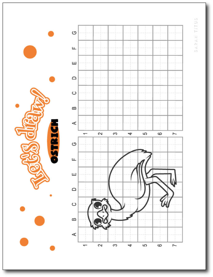 Draw-Ostrich-Step-By-Step