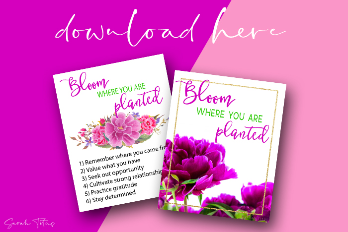 Bloom-Where-You-Are-Planted-Wall-Art-Printable