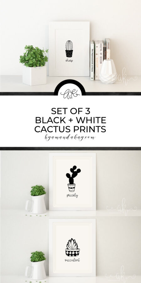 Black and White Cactus Prints