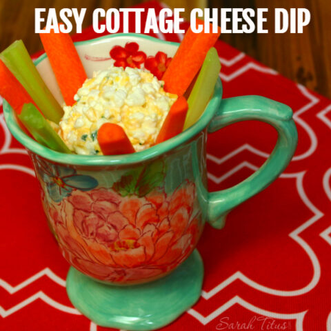 Cottage Cheese Dip Recipe - Get Kids to Eat Their Veggies
