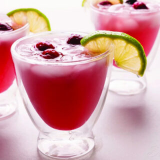 Cranberry and Lime Kid Friendly Spritzer