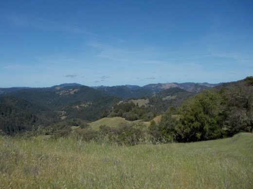 Armstrong Redwoods State Park