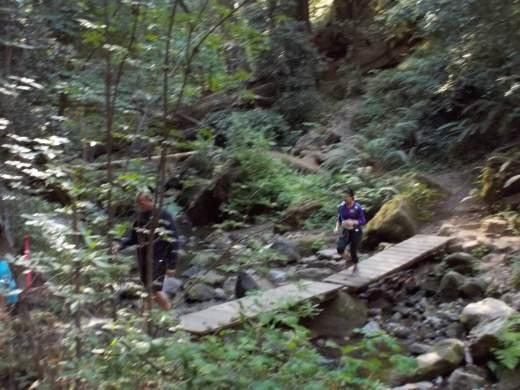 Berry Creek Falls 25k