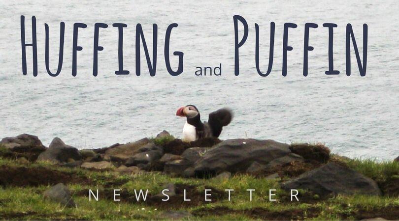 Puffin Logo Sara Kurth newsletter