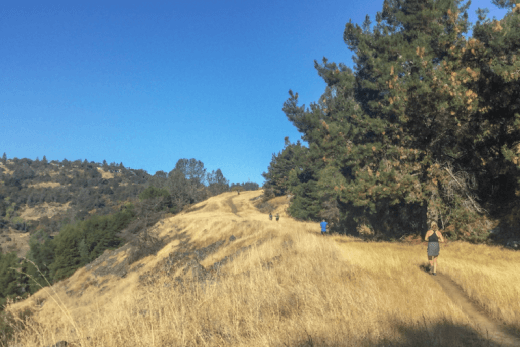 tips for new trail runners