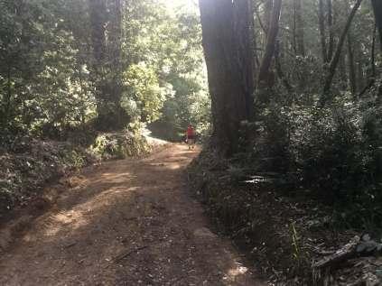 Salt Point Trail Race