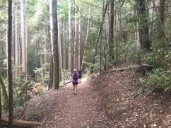 Salt Point Trail Race