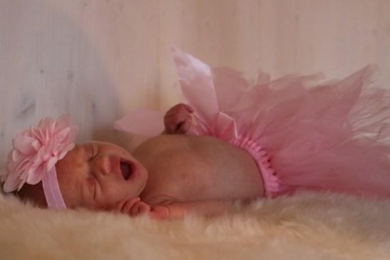 Alice nyfödd