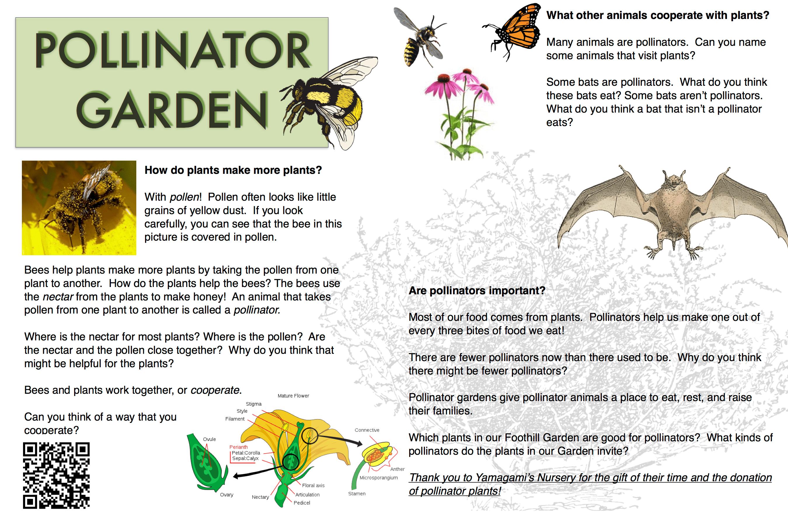 pollinator garden – saratoga foothill elementary pta