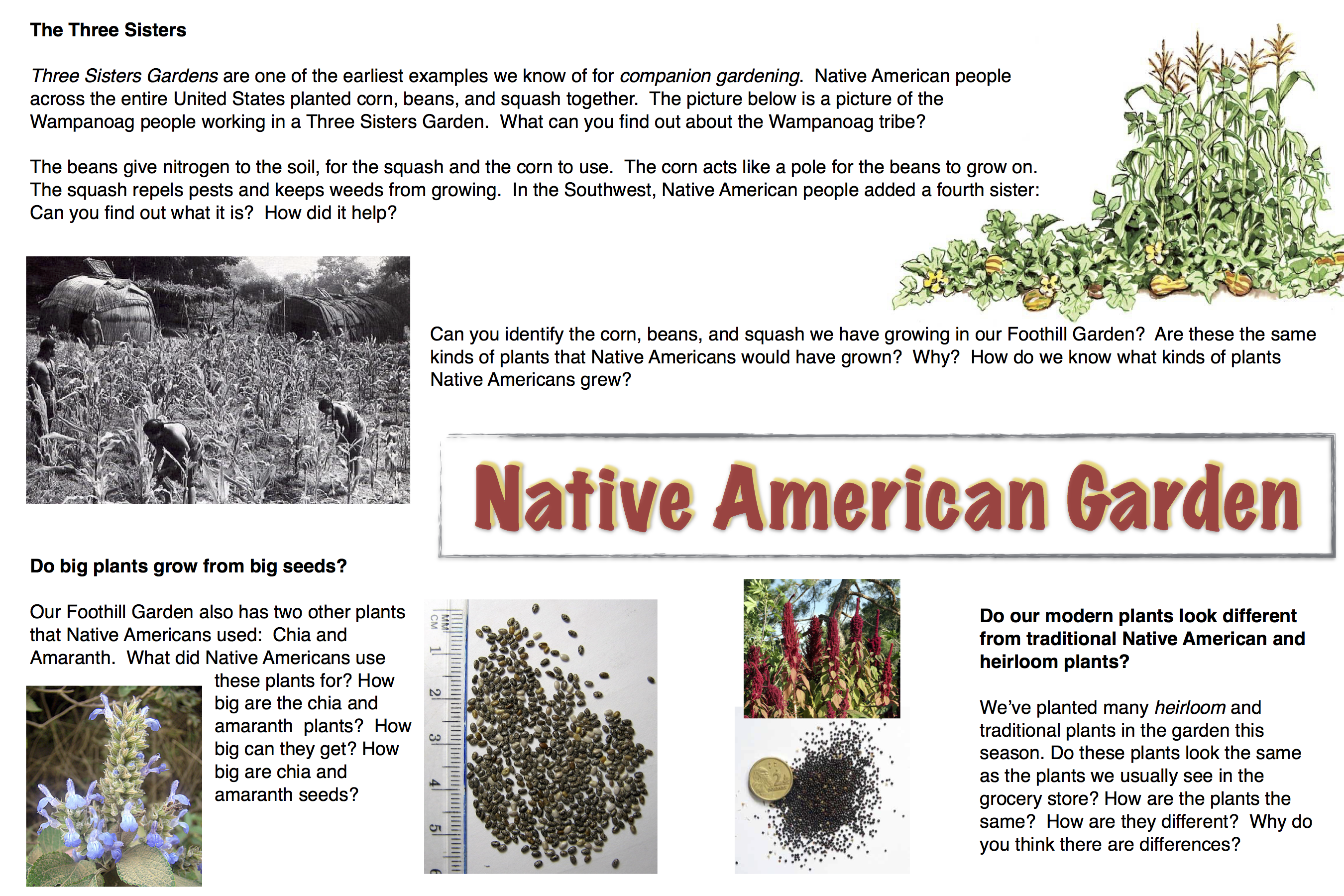 native american garden saratoga foothill elementary pta